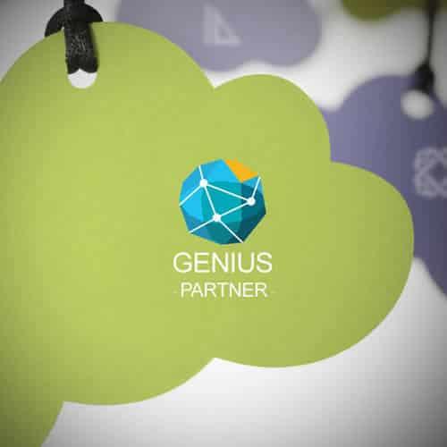 Stéphane Razat Web designer Toulouse : Genius Partner