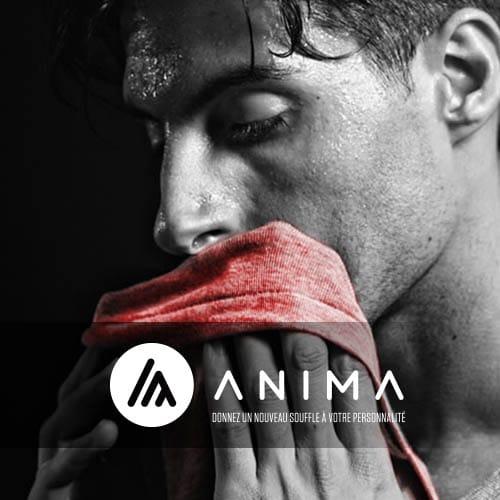 Portfolio Stéphane Razat Web designer Toulouse : Anima